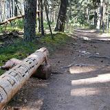 Camino 2010 077.jpg