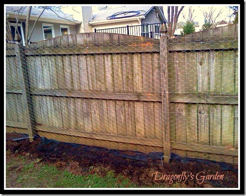finished fence