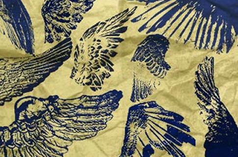 Pinceles de alas marcadas