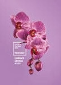 PANTONE LLC RADIANT ORCHID ORCHID