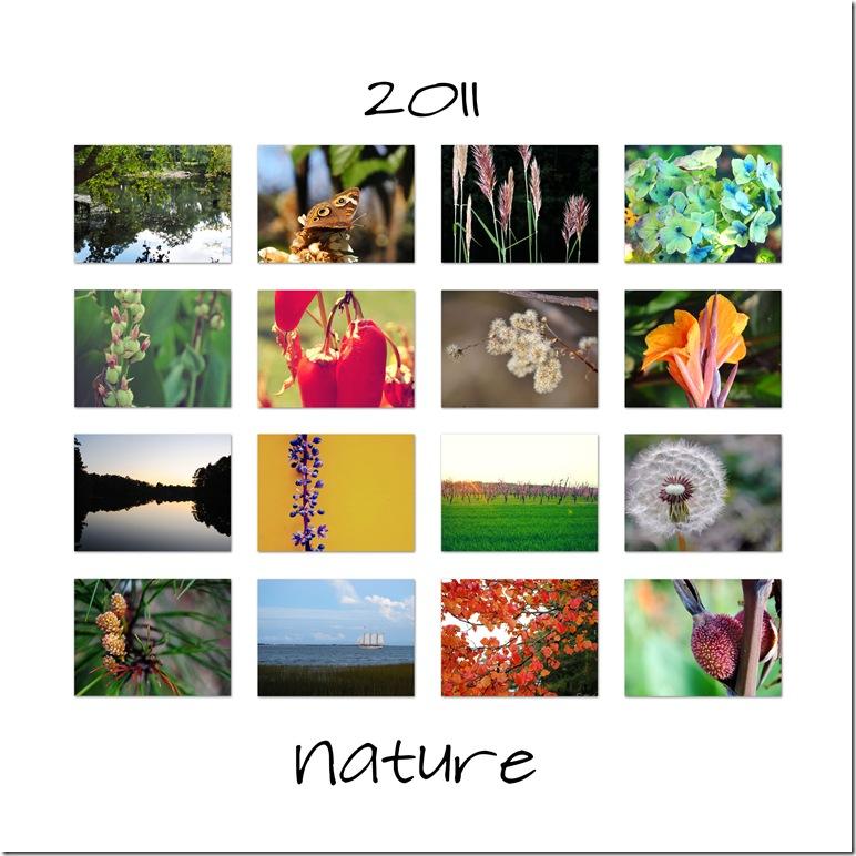 2011-nature