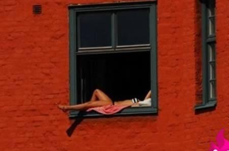 z-tomando-sol-janela-apartamento