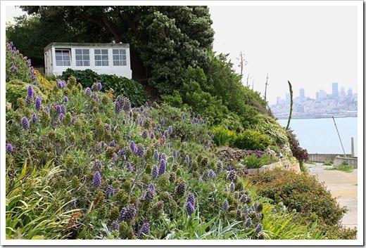 120408_Alcatraz_285