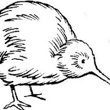 Kiwi_by_blood_dodo.jpg