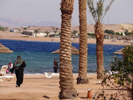 18. Plaja Aqaba.JPG