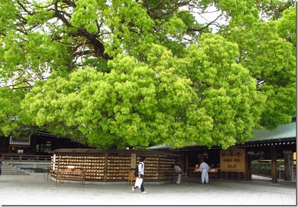 Japan May 2011 163