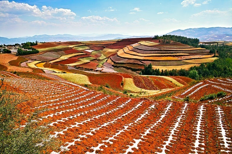 dongchuan-red-soil-10