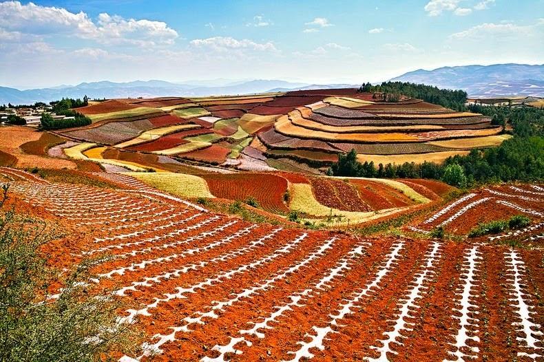 dongchuan-red-soil-10