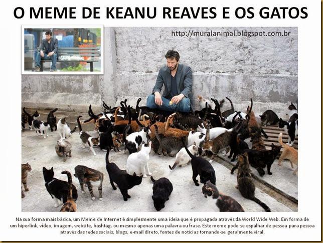 O MEME DE KEANU REAVES E OS GATOS