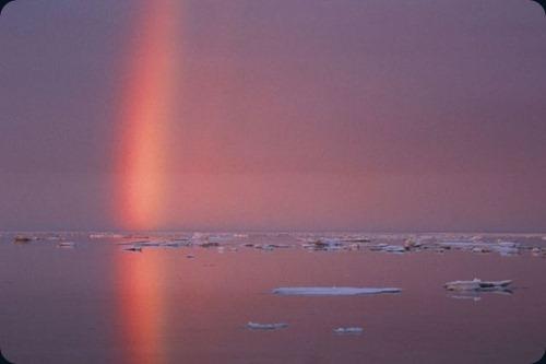 Polar Obsession31