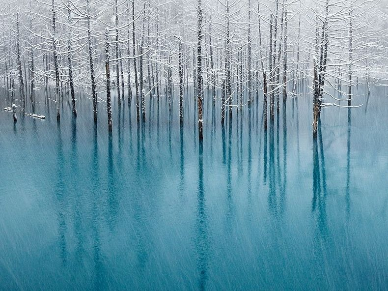 Why Is Hokkaido S Nature Is Preserved