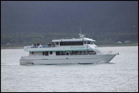 Kenai-Fjords-Tours