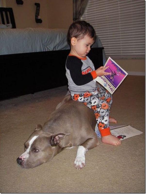 Crianças e animais (2)