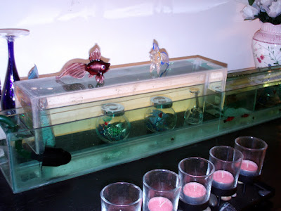 Upside down Aquarium in a regular Aquarium