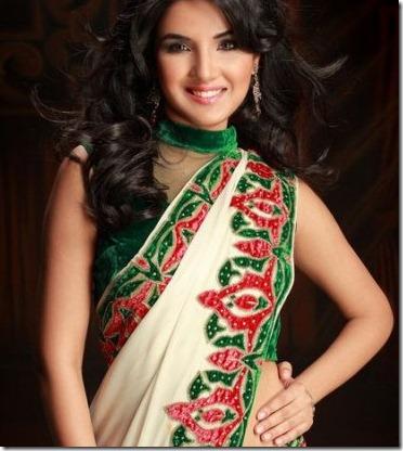 jasmin_bhasin_beautiful_still_in saree