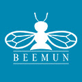 Icon Beemun