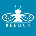 Icon Beemun