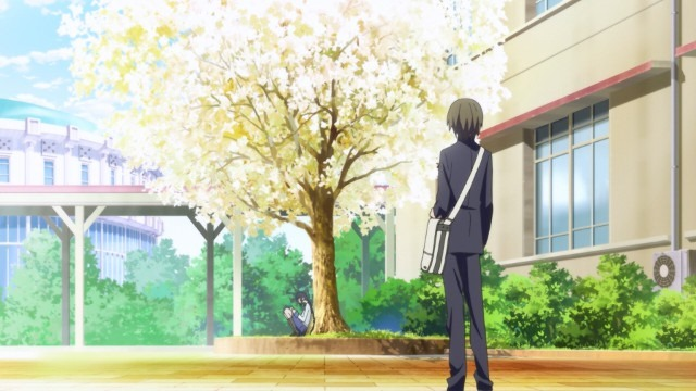 Inoue stands, back to the viewer, in his school's courtyard looking at a tree bright yellow tree with a girl sitting under it reading a book