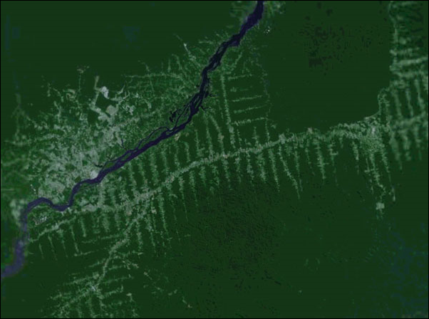 Satellite view of roads in the Brazilian Amazon. Photo: Digital Earth / mongabay.com