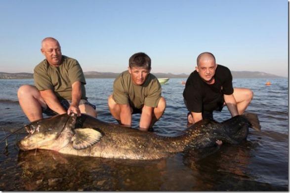 big-fish-fishing-30