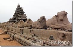 SueReno_Mahabalipuram 5