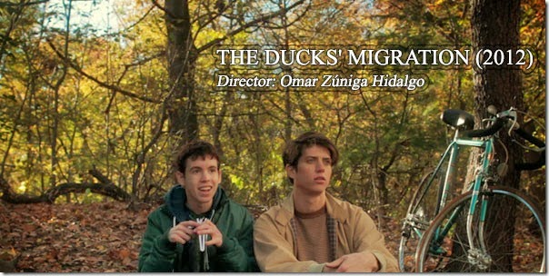 THE DUCKS MIGRATION