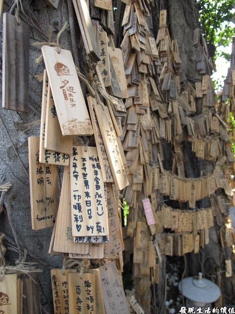 台南夕遊出張所-夕遊祈願樹,就在入口處的左手邊,上面掛滿了大家的願望,希望大家都能心想事成。