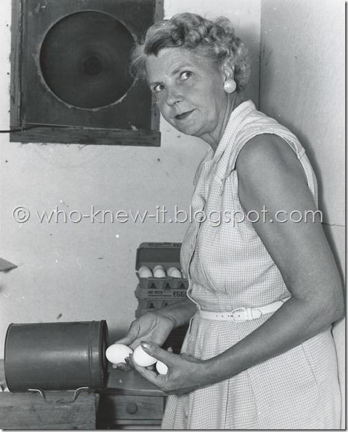 Clara candling eggs