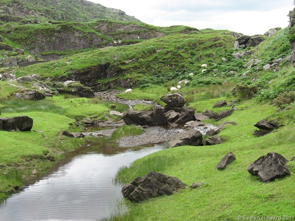 Gap of Dunloe © Evelyn Howard 2011