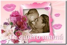 dia de la madre 14 febrero net 1 1