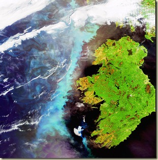 Irlanda y el fitoplancton