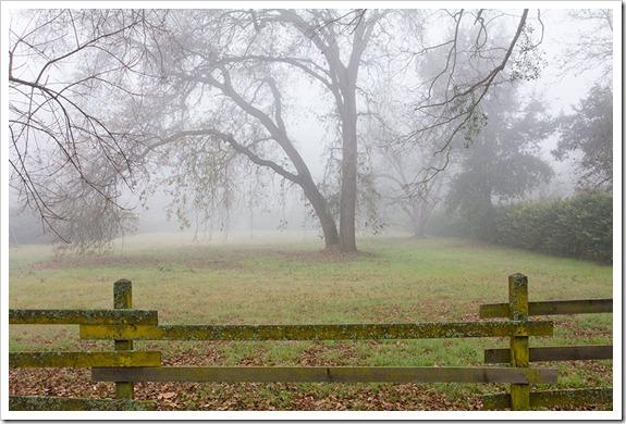 111220_fog_fence