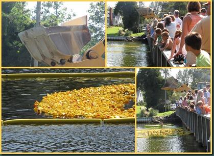 duck race start collage