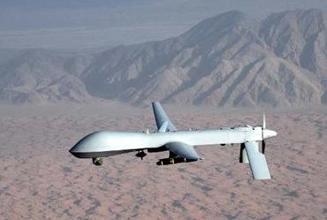 pedetor drone_web