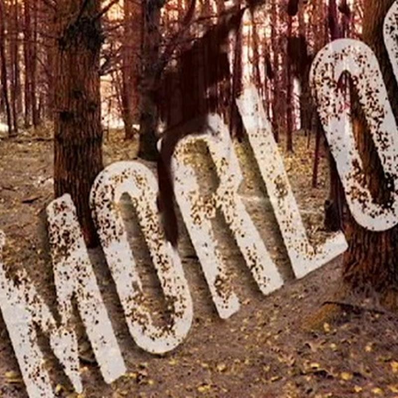 Morloc - EP Promo