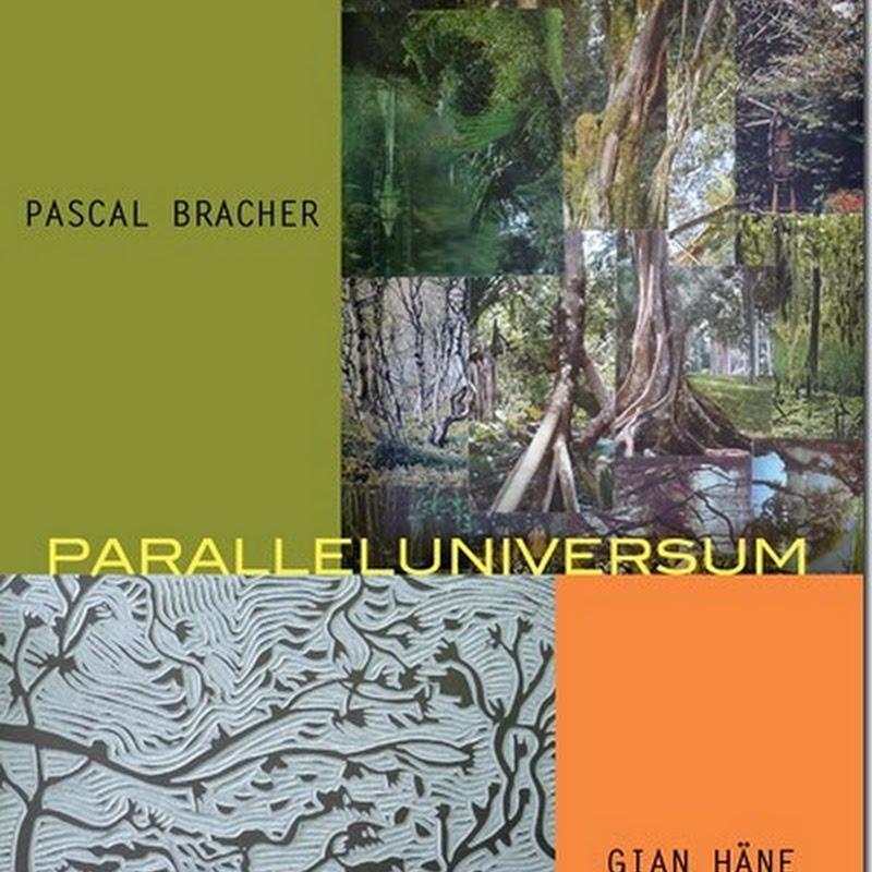 AusGehTipp: Galerie f5 – Pascal Bracher und Gian Häne – Paralleluniversum (Vernissage: 3.10.2014 ab 19 – 21 Uhr)