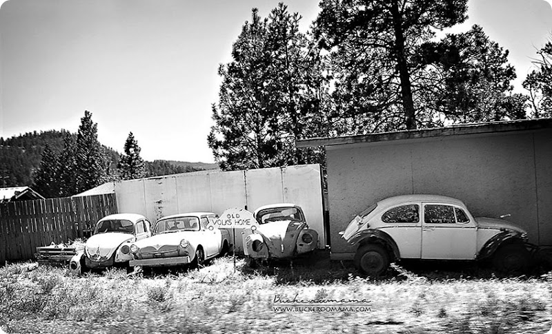 Old-Volks-Home-(1bw)