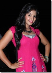 Actress Anjali at Settai Audio Launch Stills
