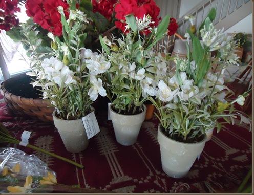 three white plants