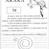 arara_gif.jpg
