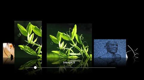 Visor con imágenes de varios tamaños