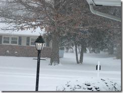 snow noon 003