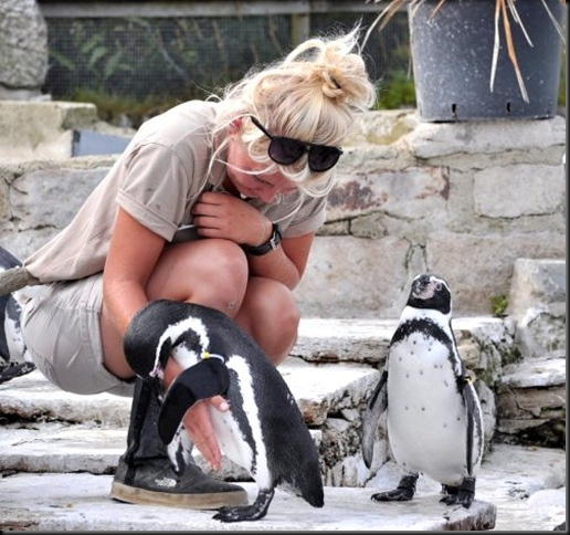 Becky with the penguins