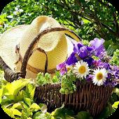DIY Gardening Tips APK for Lenovo