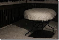 snowpocalypse  18