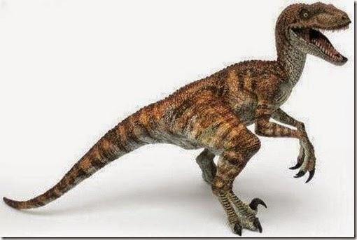 Velociraptor, jurassic park, comecarne, carnivoro, asesinos, cazadores, dinos