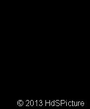 etil-sikloheksana5