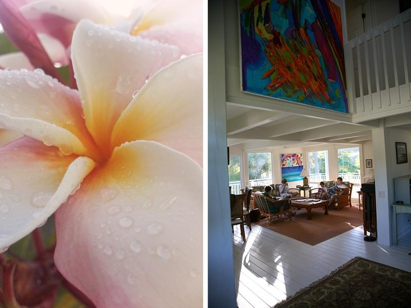 kauai house2