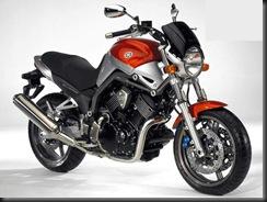 Yamaha BT1100  7