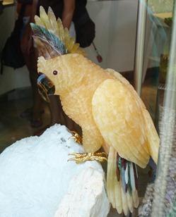 stone birdsii